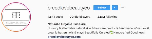 Instagram bio examples breedlovebeautyco