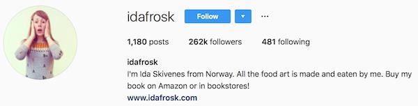 Instagram bio examples idafrosk