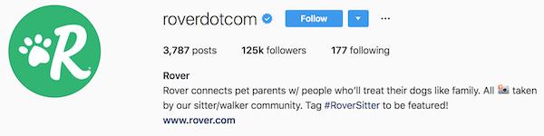 Instagram bio examples roverdotcom